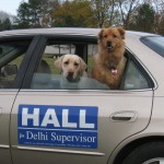 My dog, Miss Emme Lu Who and Jeff Hall's dog Miss Allie help me to deliver yards signs for my local candidates
